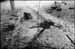 chechen1995